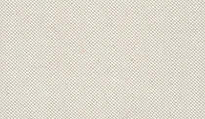 platina siva 001