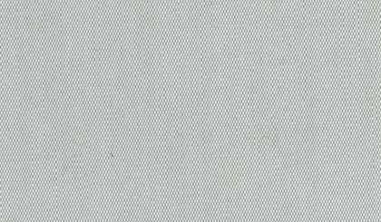 srebrno-siva 041